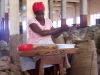 sorting-nutmeg-in-grenada-2