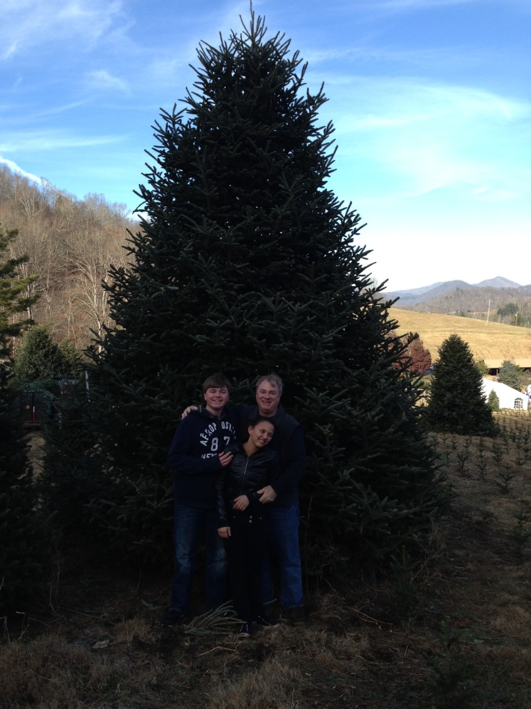Getting The Tree This Year